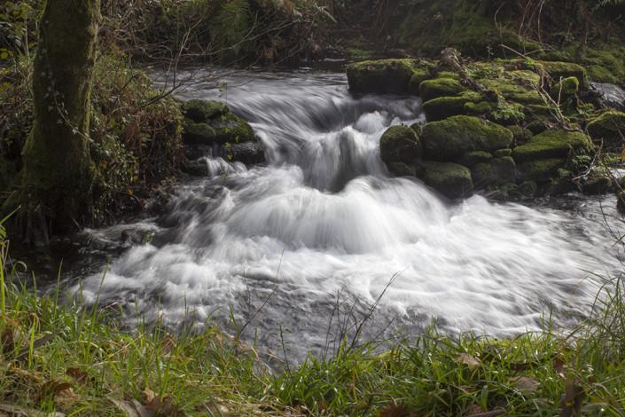 salto de agua, por fatima coto